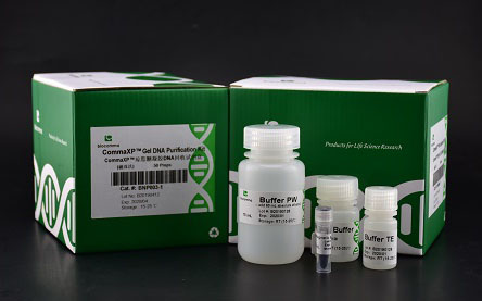 CommaXP® Nucleic Acid Extraction Kits (magnetic beads)